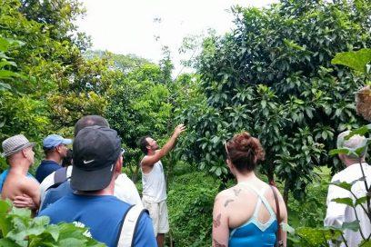 Taino Organic Farm Tour