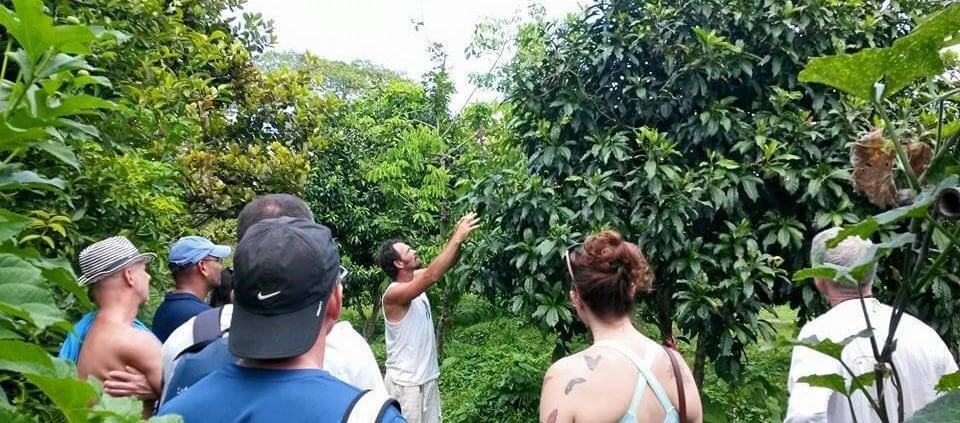 Our Organic Farm Tour