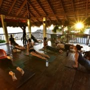 yoga styles at the yoga loft cabarete Caribbean yoga retreat
