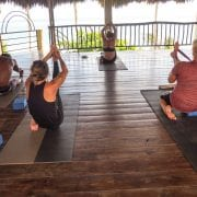 yoga marketing - yoga networking