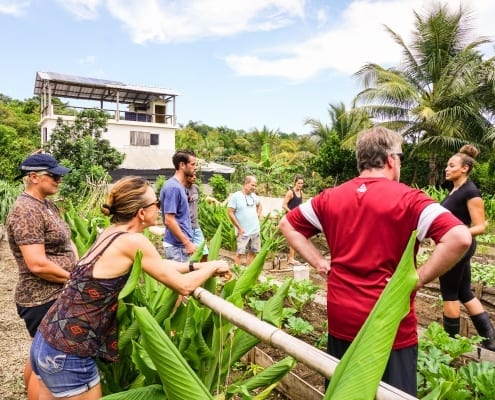farm to table yoga loft cabarete